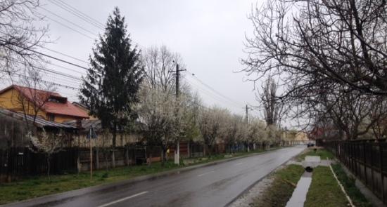 Comuna Sabareni